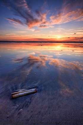 Shell, Sunset, Saunton