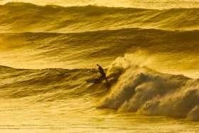 Golden Surf
