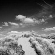 Sand Dunes, Croyde