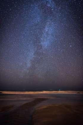 Grunta Stars
