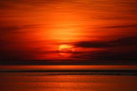 Flaming June Sunset Study 10